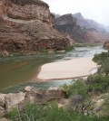 A sandbar deposited by a controlled flood in the Grand Canyon section of the Colorado River. (Credit: Matt Kaplinski, Northern Arizona University)