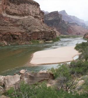 A sandbar deposited by a controlled flood in the Grand Canyon section of the Colorado River. (Credit: Matt Kaplinski, Northern Arizona University)