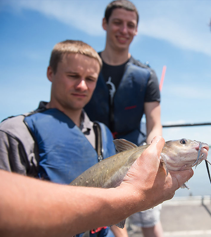 The LACMRERS class is a hands-on experience for students. (Credit: University of Iowa)