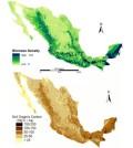 Above-ground biomass density and soil organic carbon data. (Credit: Paz, Vargas, et al.)