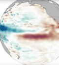 Sea surface height anomalies for the Pacific Ocean basin between January and July of 2015. (Credit: NASA)