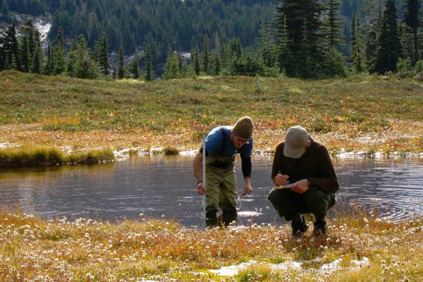 Noll Steinweg and Reed McIntyre, undergraduate field research assistants at Western Washington University, collect water level data at a mountain wetland site. (Credit: Maureen Ryan / University of Washington)