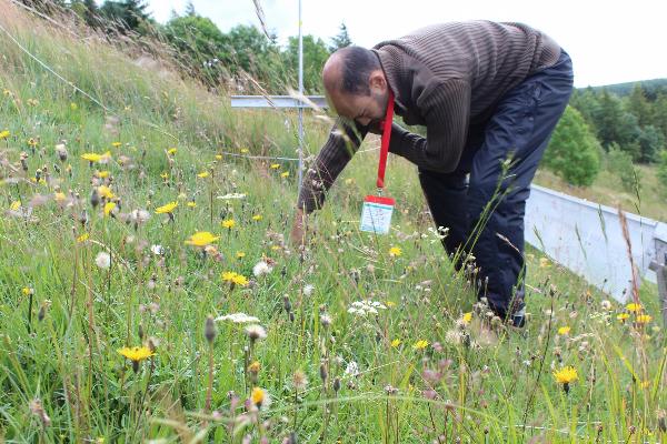 Taking soil depth measurements at Buxton Climate Change Impacts Lab, summer 2015. (Credit: Raj Whitlock / University of Liverpool)