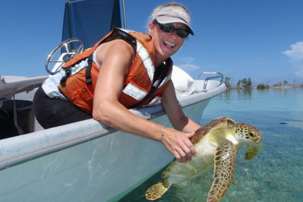 Kristen Hart releases a juvenile Green sea turtle after workup and tagging, August 2008, Dry Tortugas National Park. (Credit: Keith Ludwig, U.S. Geological Survey)