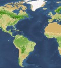Researchers updated the global tree count estimate. (Courtesy of Yale)