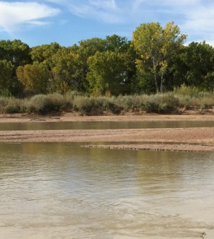 The Rio Grande River. (Credit: Aaron Hilf / University of New Mexico)