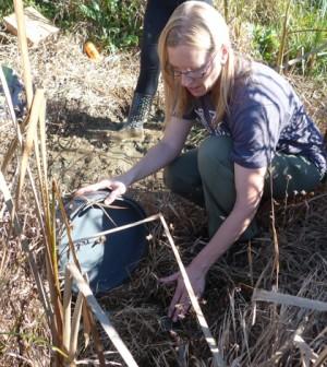 Kristy Hopfensperger inspects a gas-catching chamber after sampling. (Credit: Daniel Kelly / Fondriest Environmental)