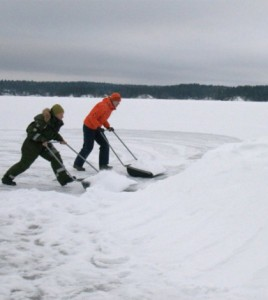 Piling a human-made snowdrift in the breeding habitat of the ringed seal in Lake Saimaa, Finland. (Credit: Mervi Kunnasranta)