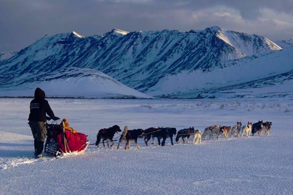 Dog mushing in the Brooks Range, Alaska, with Brent Sass. (Credit: Ken Tape)