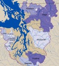 Purple shading shows how much of each watershed's area is covered by glacier. (Credit: Robert Norheim / UW Climate impacts Group)