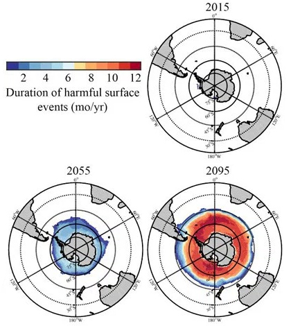Duration of harmful surface events for today, 2055 and 2095. (Credit: Nina Bednarsek / NOAA)