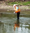 Stephanie Janosy collects a water quality sample using a DH-81 at Tiffin River near Evansport, Ohio. (Credit: Donna Runkle)