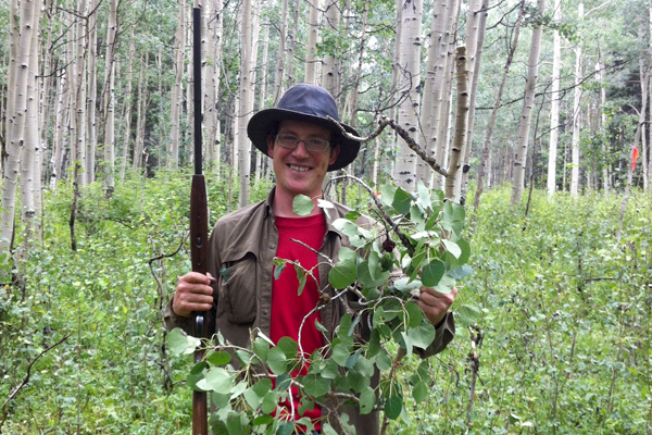 Leander Anderegg used a shotgun to collect branches from trees like the trembling aspen. (Credit: Leander Anderegg / University of Washington)