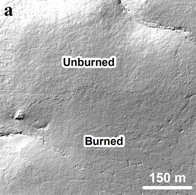 Ice wedge degradation following the Anaktuvuk River tundra fire. (a) Hillshade derived from the 2009 LiDAR digital terrain model. (Credit: Benjamin Jones / U.S. Geological Survey)