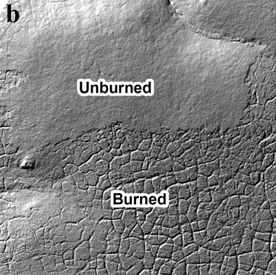 (b) Hillshade derived from the 2014 LiDAR digital terrain model. (Credit: Benjamin Jones / U.S. Geological Survey)