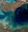Algal bloom in Lake Erie, Oct. 5, 2011. (Credit: NASA)