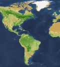 Recent survey shows trillions of trees worldwide. (Credit: Crowther, et al / Nature)