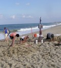 Researchers install instrument arrays in the beach at Herring Point, Cape Henlopen. The instruments were buried in the unsaturated zone to monitor the movement of groundwater in response to waves running up and down the beach. (Credit: University of Delaware)