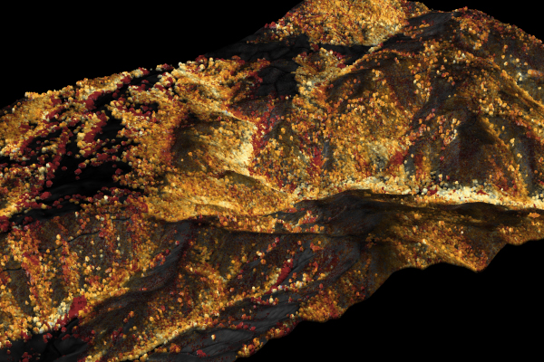 Spectroscopic image of canopy water content, Pinnacles National Park, California. (Credit: Greg Asner)