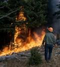 Forest fire. (Credi: Public Domain)
