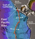 The East Pacific Rise is a mountain range under the Pacific Ocean. (Credit: MBARI/NOAA)