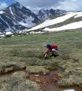 Scientists collect water samples during snowmelt season at the Saddle site at Niwot Ridge. (Credit: Stephen Schmidt / National Science Foundation)