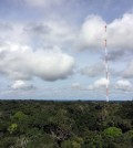 Amazon Tall Tower Observatory in the middle of the Amazon, Brazil. (Credit: Meinrat O. Andreae)
