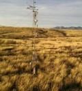Kendall Grassland in southeastern Arizona. (Credit: R.L. Scott / USDA-ARS)