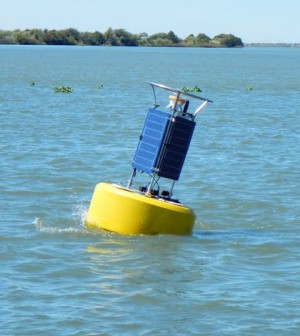 NexSens CB-950 Data Buoy deployed near Liberty Island in the California Delta. (Credit: Scott Nagel / U.S. Geological Survey California Water Science Center)