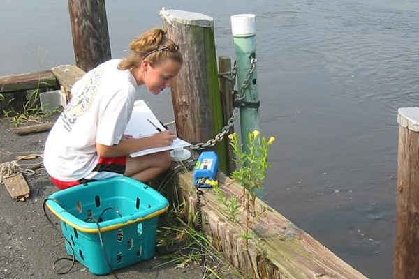 A field biologist with the Maryland Department of Natural Resources records measurements of water quality parameters. (Credit: Brian Smith / Maryland Department of Natural Resources)