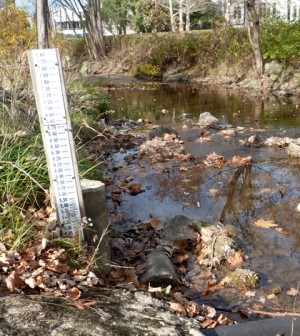 A staff gauge tracks Tiffin, Ohio's Rock Creek's water levels. Its water is pumped out for sampling through a pipe. (Credit: Daniel Kelly / Fondriest Environmental)