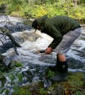 A field technician with the Penobscot Indian Nation uses a pH meter to take stream quality measurements. (Credit: Dan Kusnierz / Penobscot Indian Nation)