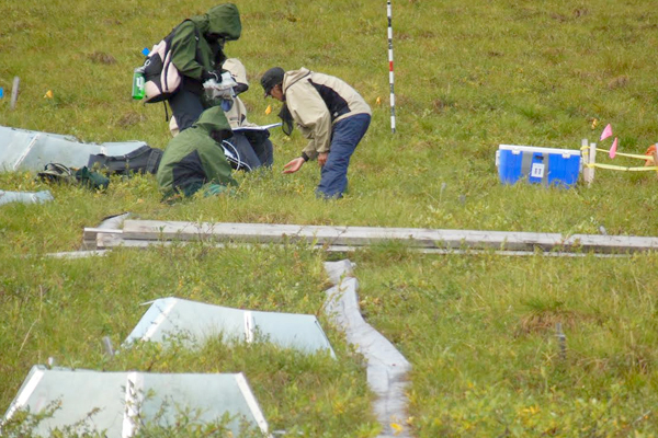 The research team takes methane and vegetation samples from the 50 percent-increased snow experimental tundra sites. (Credit: Miquel Gonzalez-Meler)