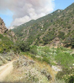 A border fire near the Santa Margarita Ecological Reserve. (Credit: University of California, San Diego / HPWREN)