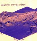 3D image of the Monterey Canyon system derived from approximately 4,000,000 soundings. (Credit: NOAA)