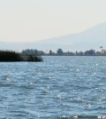 Sacramento – San Joaquin River Delta with Mount Diablo in the background. (Credit: Wikimedia Commons User Oleg Alexandrov via Creative Commons 3.0)