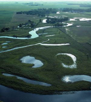 Millions of acres of riverine wetlands have disappeared across the Midewest. (Credit: USDA Natural Resources Conservation Service)