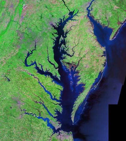 Chesapeake Bay. (Credit: Landsat / NASA)