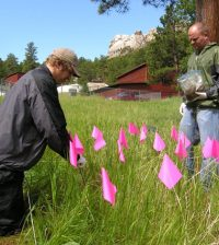 USGS scientists collect composite soil samples at Mount Rushmore National Memorial. (Credit: U.S. Geological Survey)