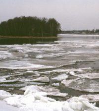 Tome River, circa 2003. (Credit: Terhi Korhonen)