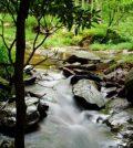 underground water flow