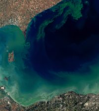 western lake erie phosphorus