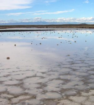 playa lakes texas panhandle ogallala