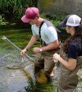 seven mile creek watershed