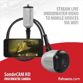 FishSens SondeCAM HD WiFi
