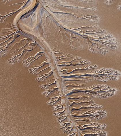 Pulse Flow Brings Colorado River Delta Big Benefits ...
