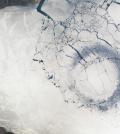 lake baikal ice circles