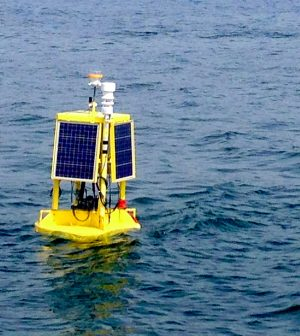 milwaukee water quality monitoring buoy informs bacteria forecasts