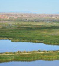variability of wetlands