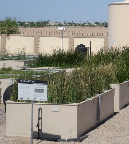 constructed wetlands ch2m hill